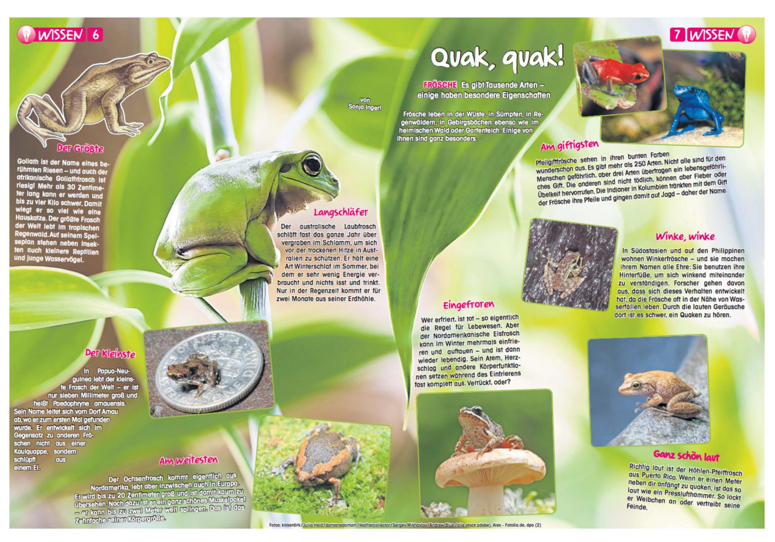 Top Duda, Deine Zeitung: quack_quack @HW_04